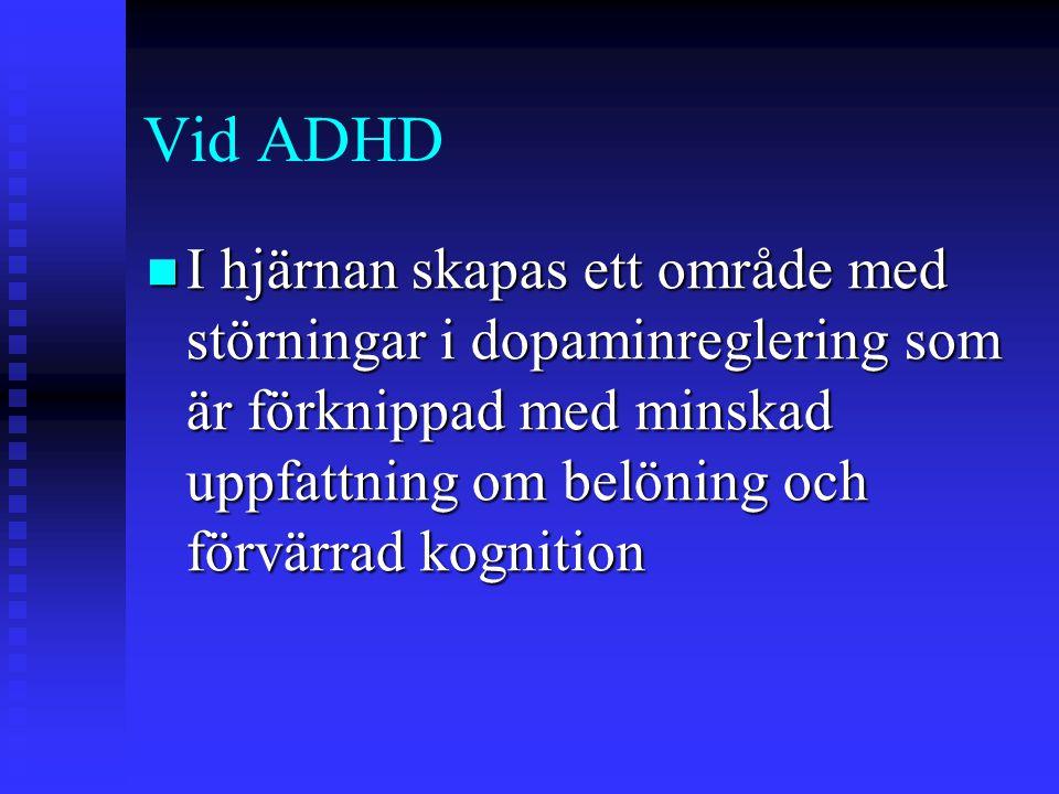 Vid ADHD I hjärnan skapas ett område med störningar i dopaminreglering som är förknippad med minskad uppfattning om belöning och förvärrad kognition.
