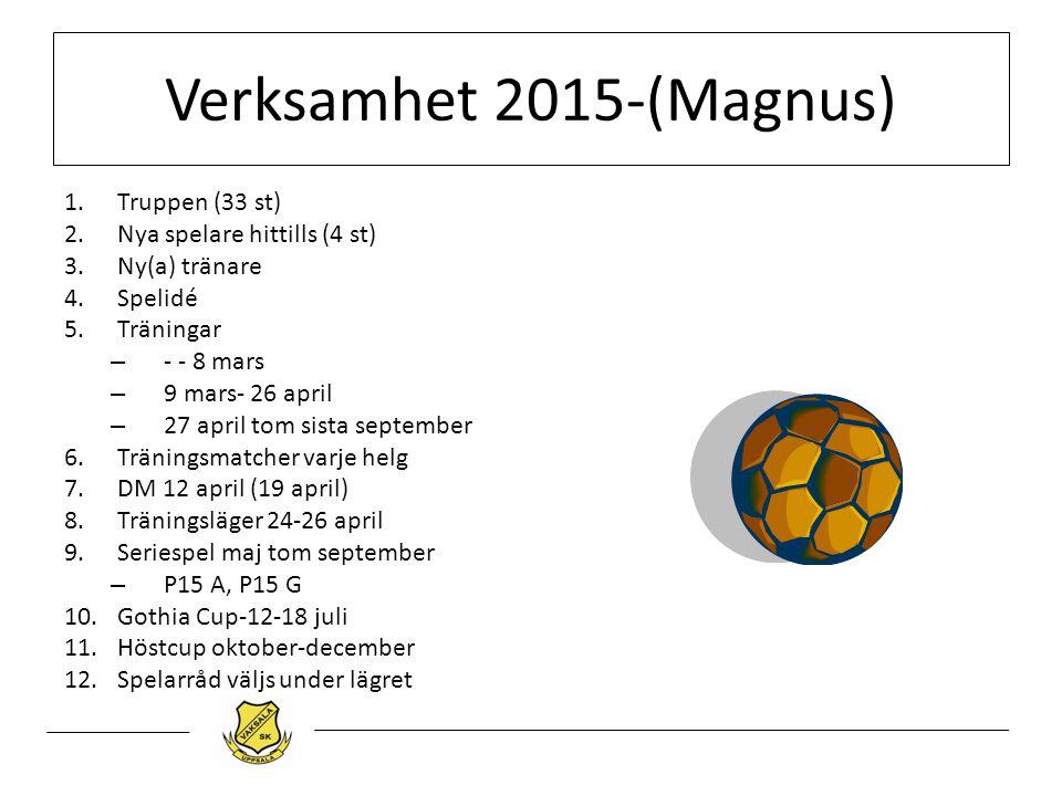 Verksamhet 2015-(Magnus) Truppen (33 st) Nya spelare hittills (4 st)