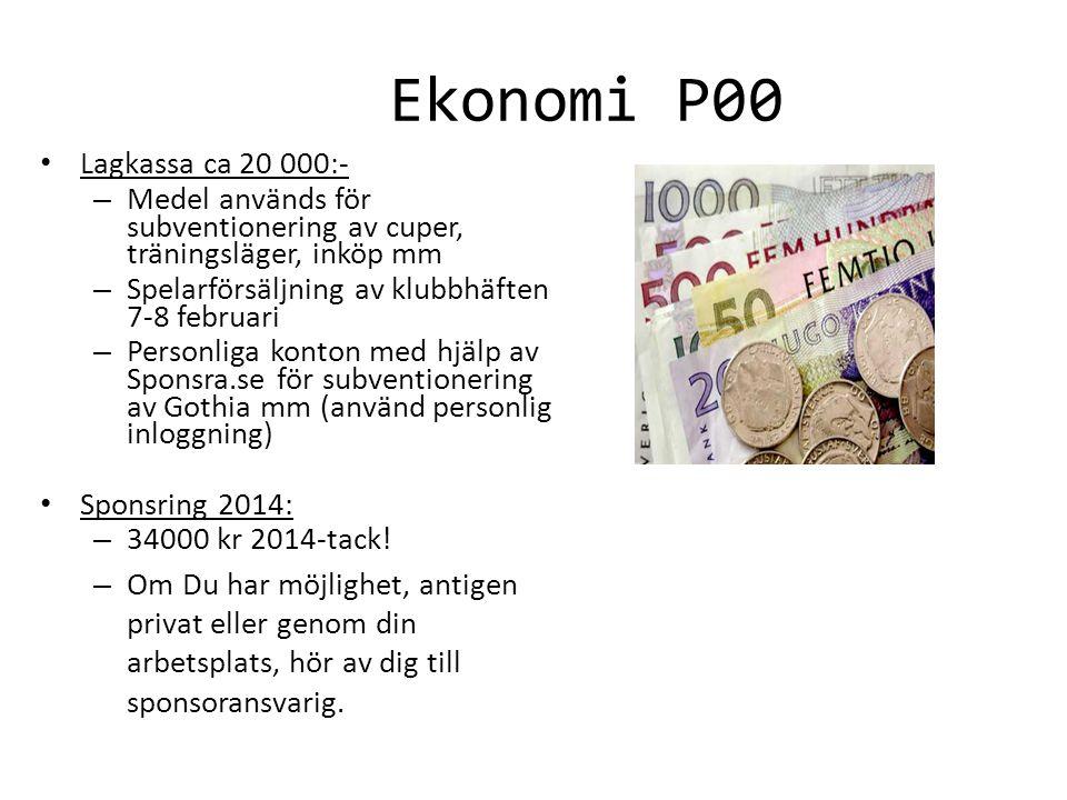 Ekonomi P00 Lagkassa ca 20 000:-