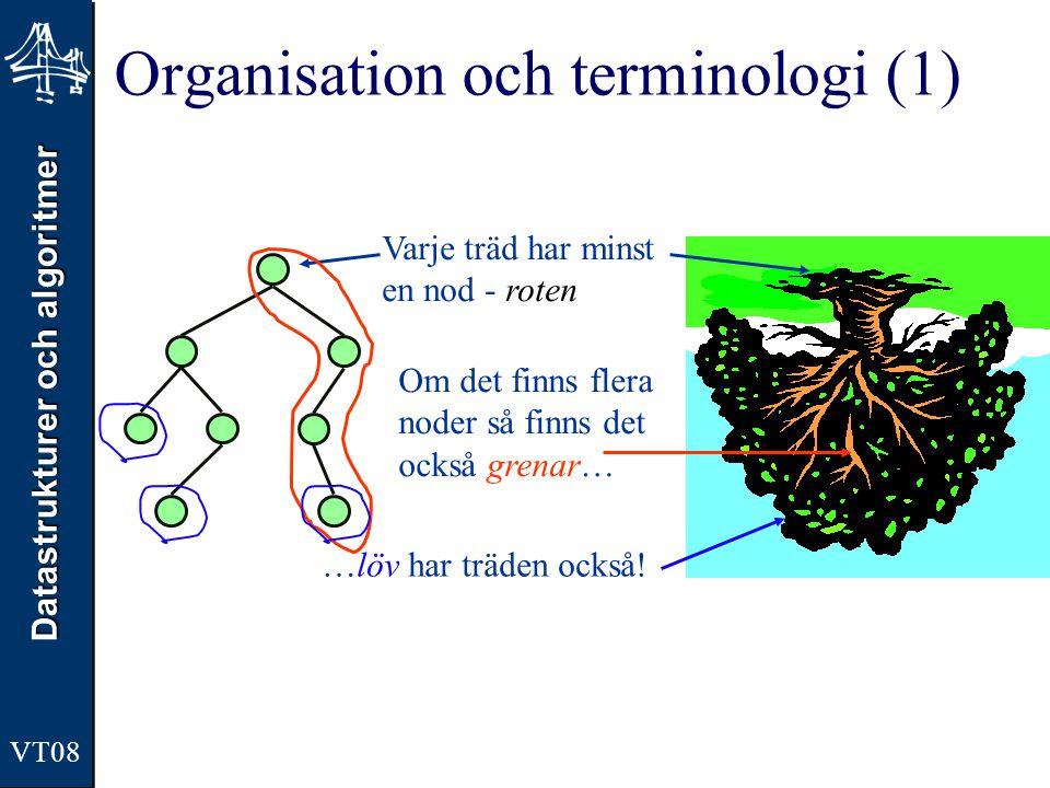 Organisation och terminologi (1)