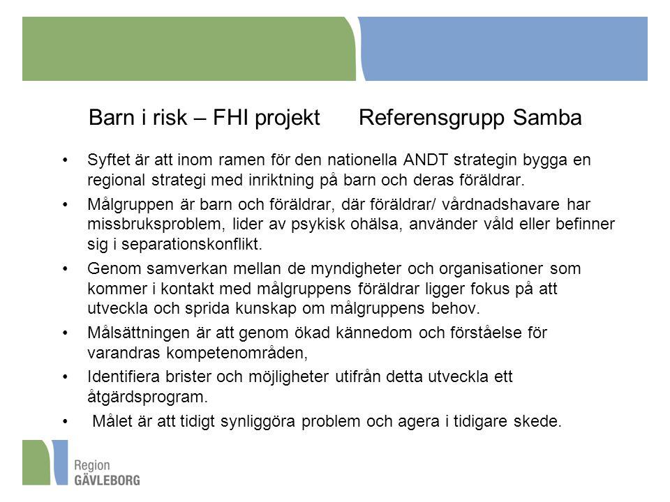 Barn i risk – FHI projekt Referensgrupp Samba