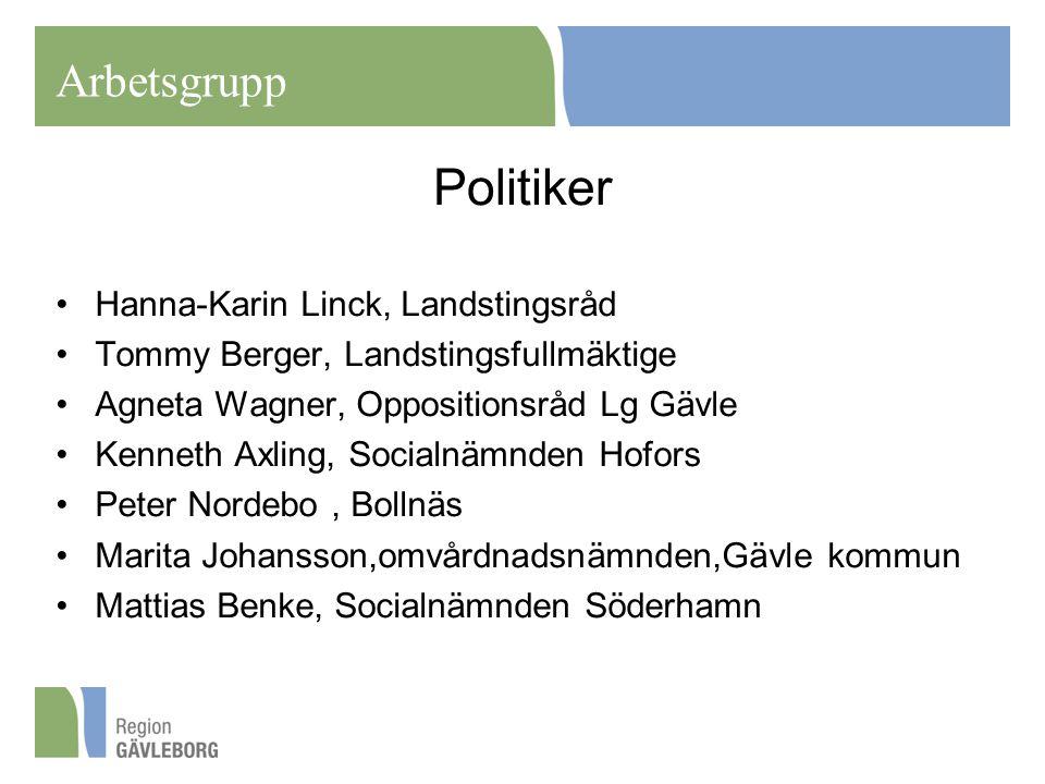 Politiker Arbetsgrupp Hanna-Karin Linck, Landstingsråd