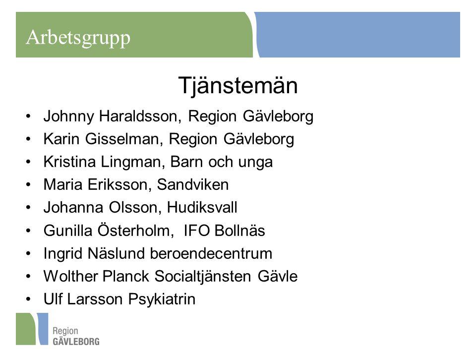 Tjänstemän Arbetsgrupp Johnny Haraldsson, Region Gävleborg