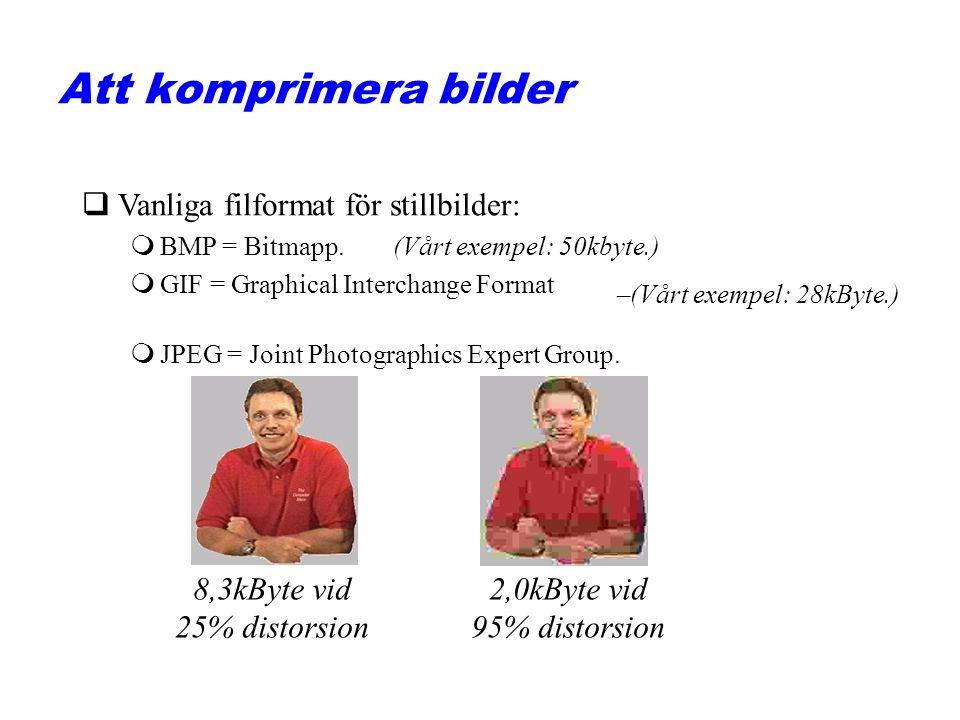 Att komprimera bilder Vanliga filformat för stillbilder: 8,3kByte vid