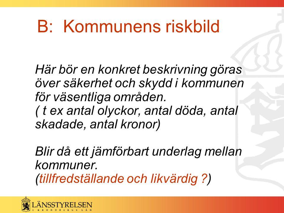 B: Kommunens riskbild
