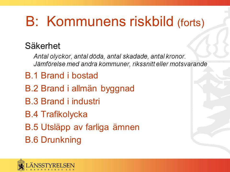 B: Kommunens riskbild (forts)