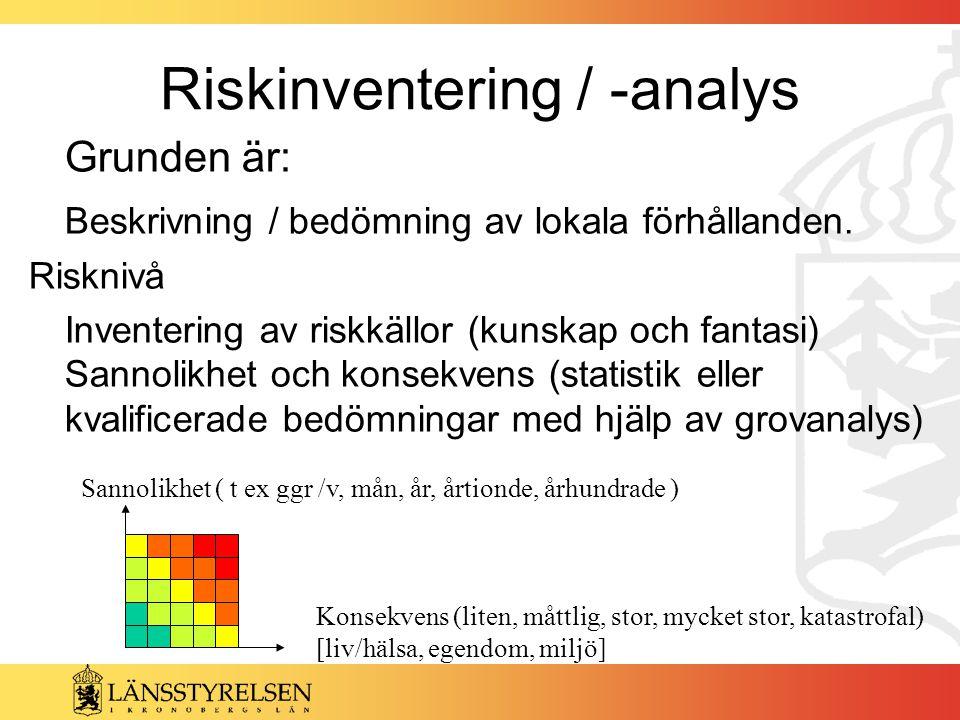 Riskinventering / -analys