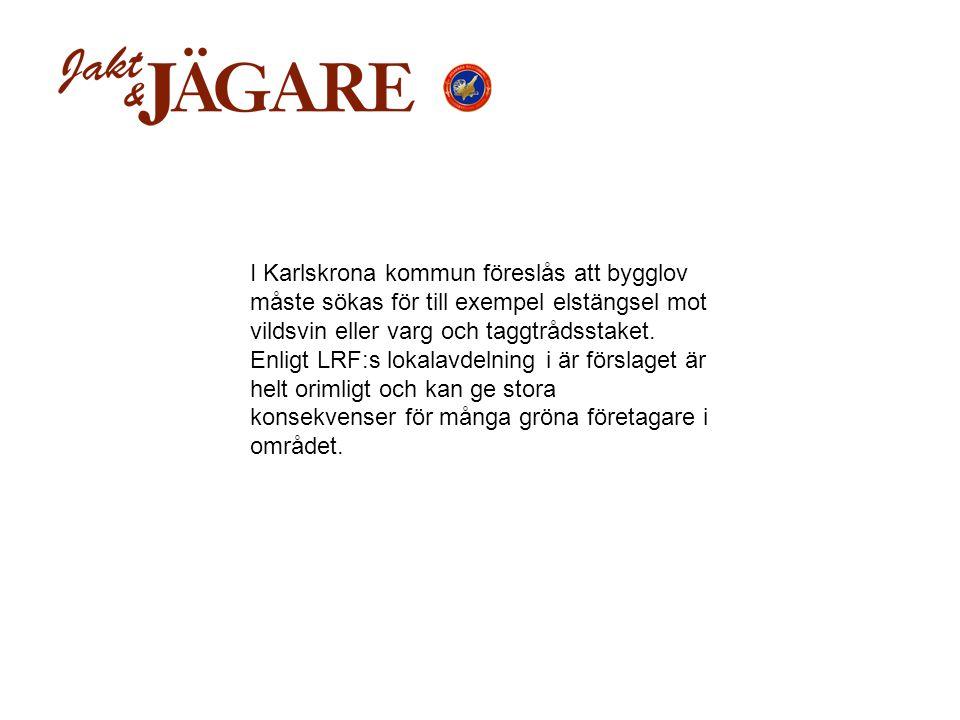 I Karlskrona kommun föreslås att bygglov måste sökas för till exempel elstängsel mot vildsvin eller varg och taggtrådsstaket.