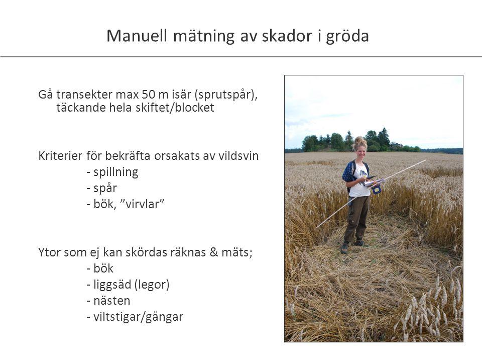Manuell mätning av skador i gröda