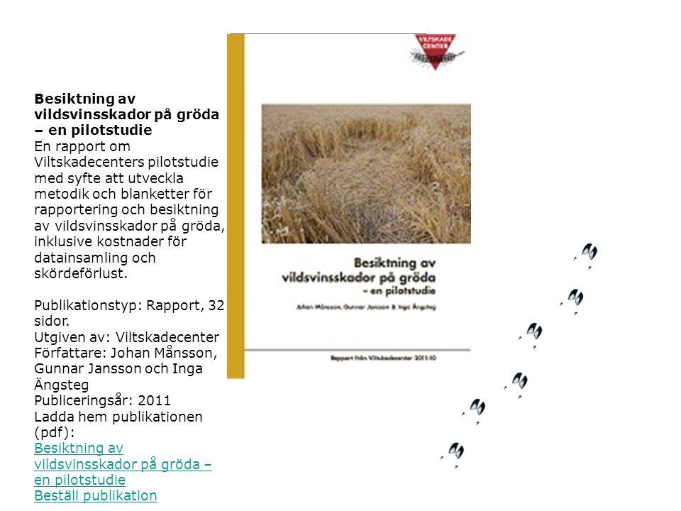 Besiktning av vildsvinsskador på gröda – en pilotstudie
