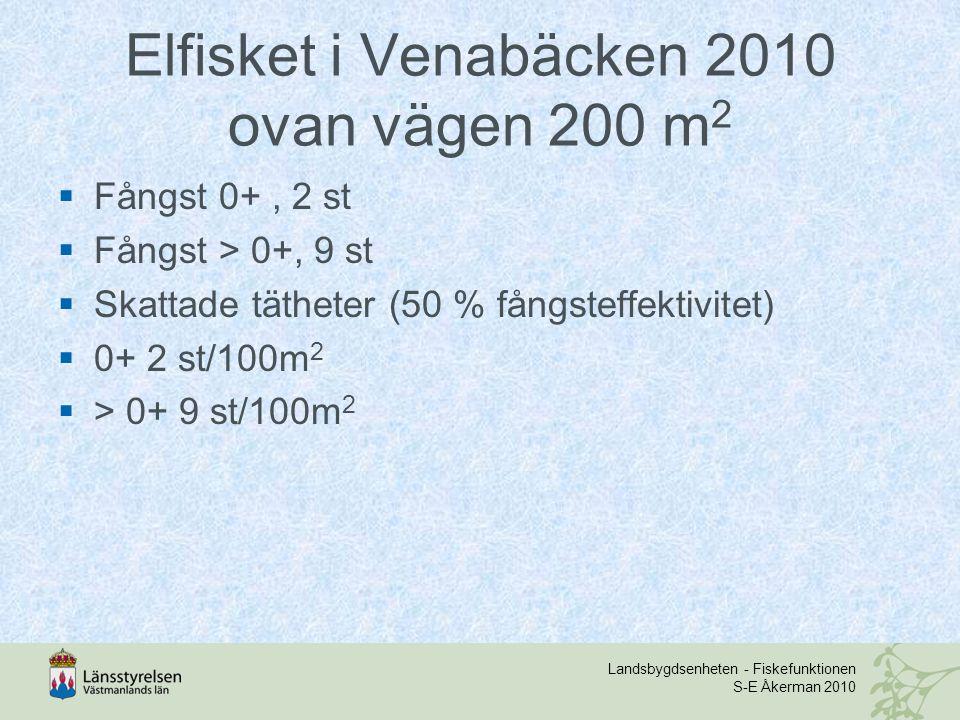 Elfisket i Venabäcken 2010 ovan vägen 200 m2