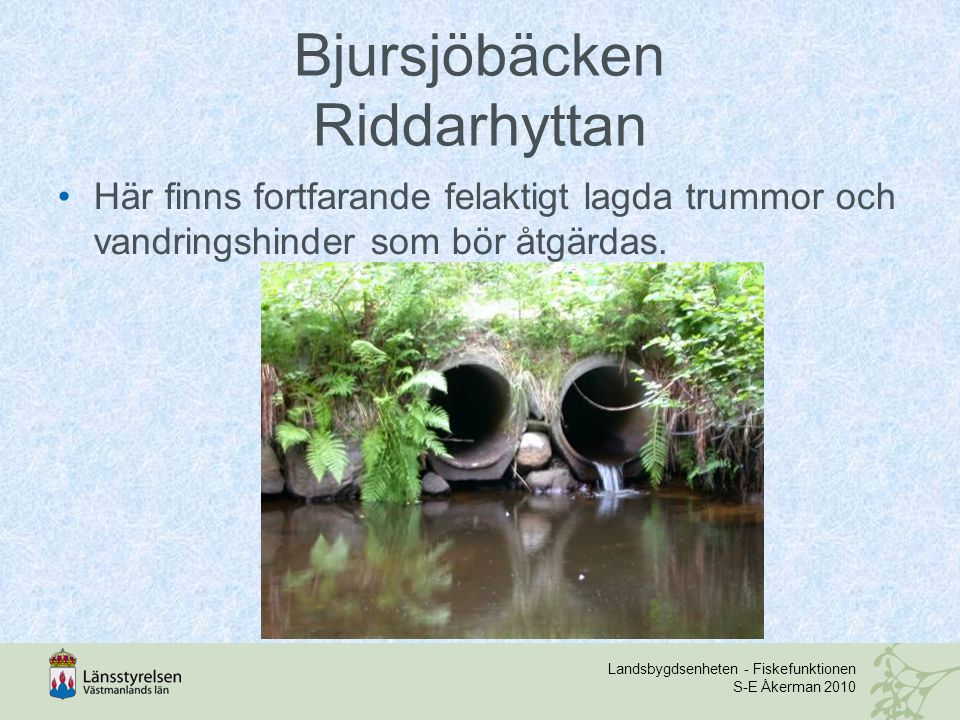 Bjursjöbäcken Riddarhyttan