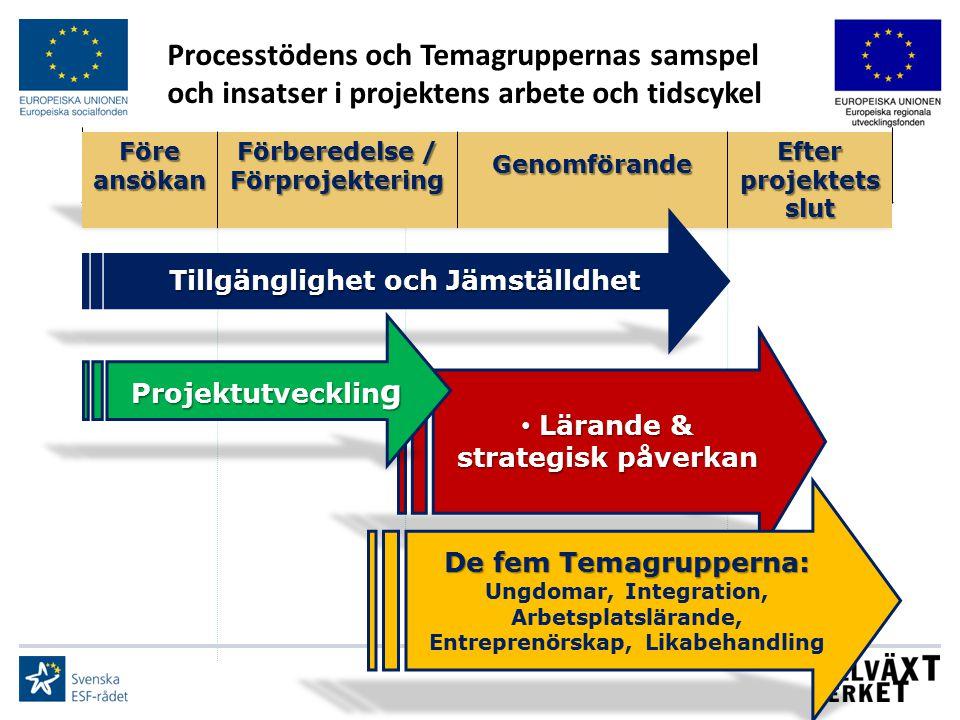 Processtödens och Temagruppernas samspel och insatser i projektens arbete och tidscykel