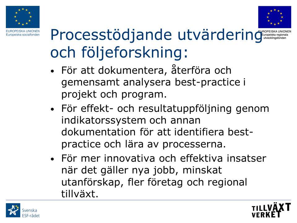 Processtödjande utvärdering och följeforskning: