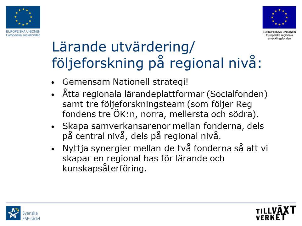 Lärande utvärdering/ följeforskning på regional nivå: