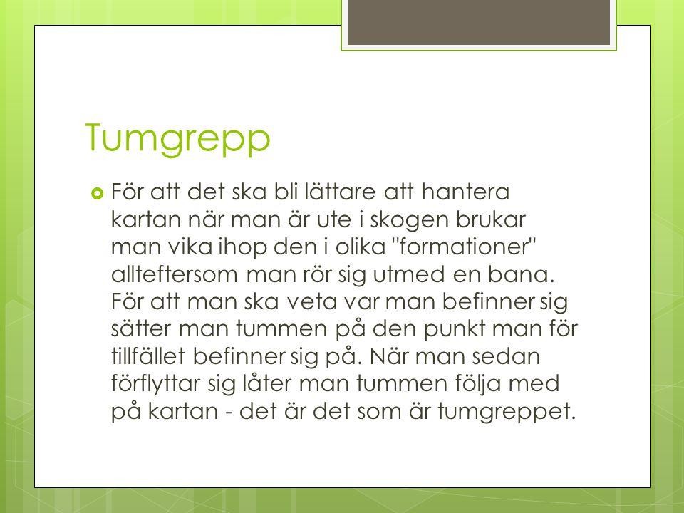 Tumgrepp