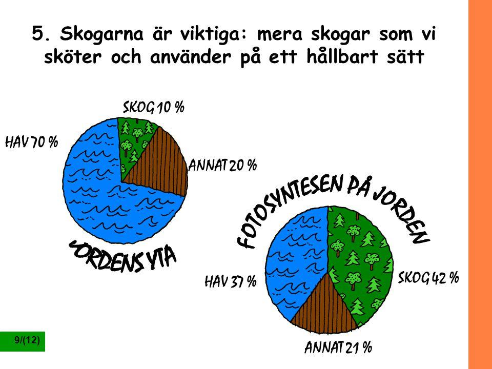 FOTOSYNTESEN PÅ JORDEN