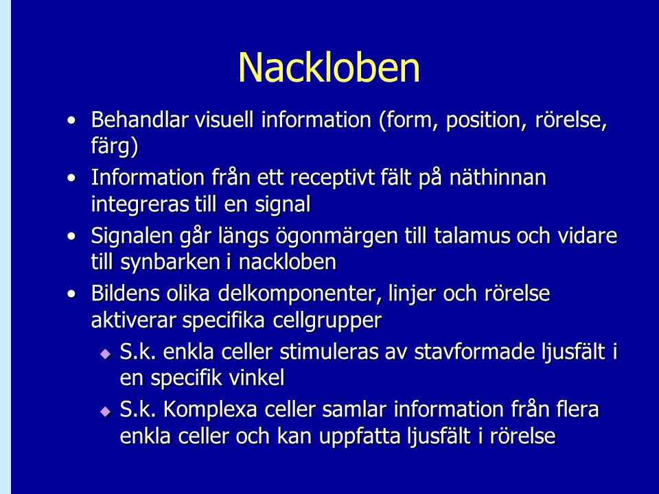 Nackloben Behandlar visuell information (form, position, rörelse, färg) Information från ett receptivt fält på näthinnan integreras till en signal.