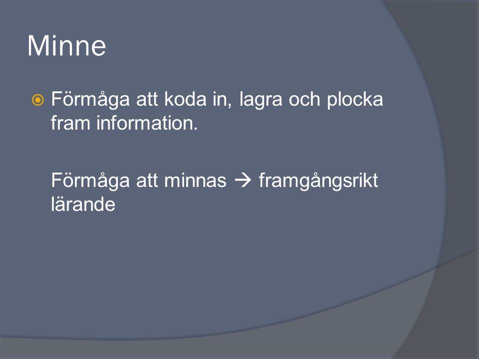 Minne Förmåga att koda in, lagra och plocka fram information.