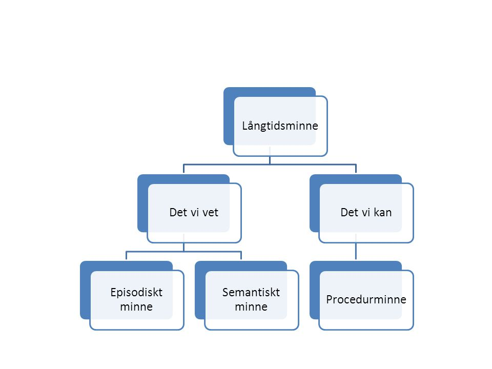 Långtidsminne Det vi vet Episodiskt minne Semantiskt minne Det vi kan Procedurminne