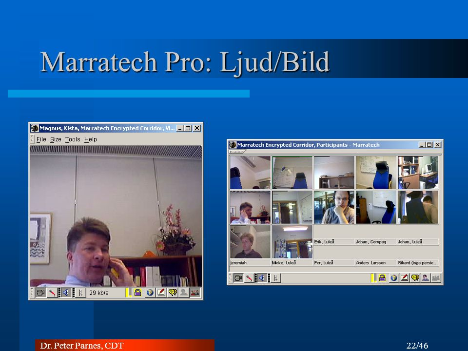 Marratech Pro: Ljud/Bild