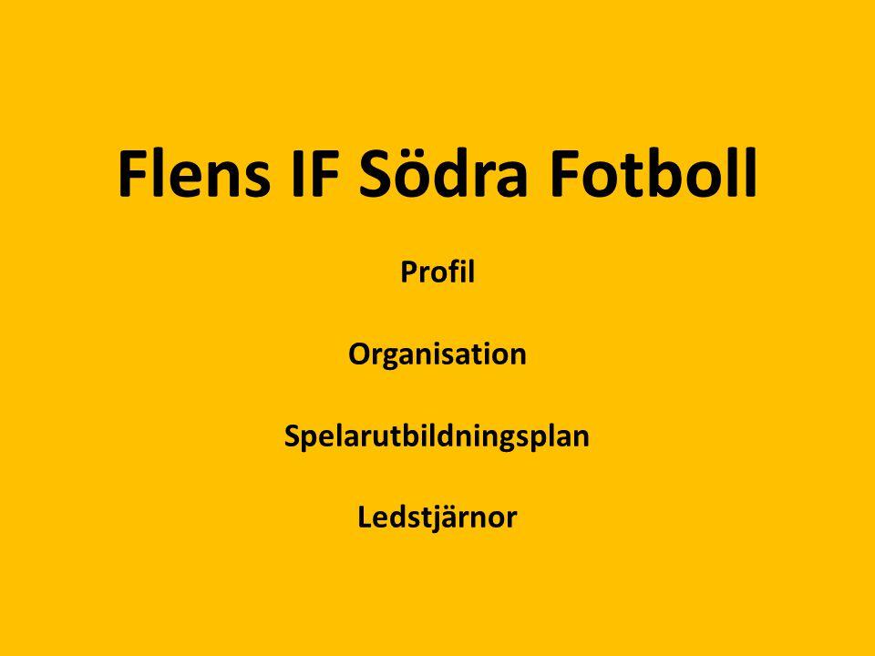 Flens IF Södra Fotboll Profil Organisation Spelarutbildningsplan Ledstjärnor