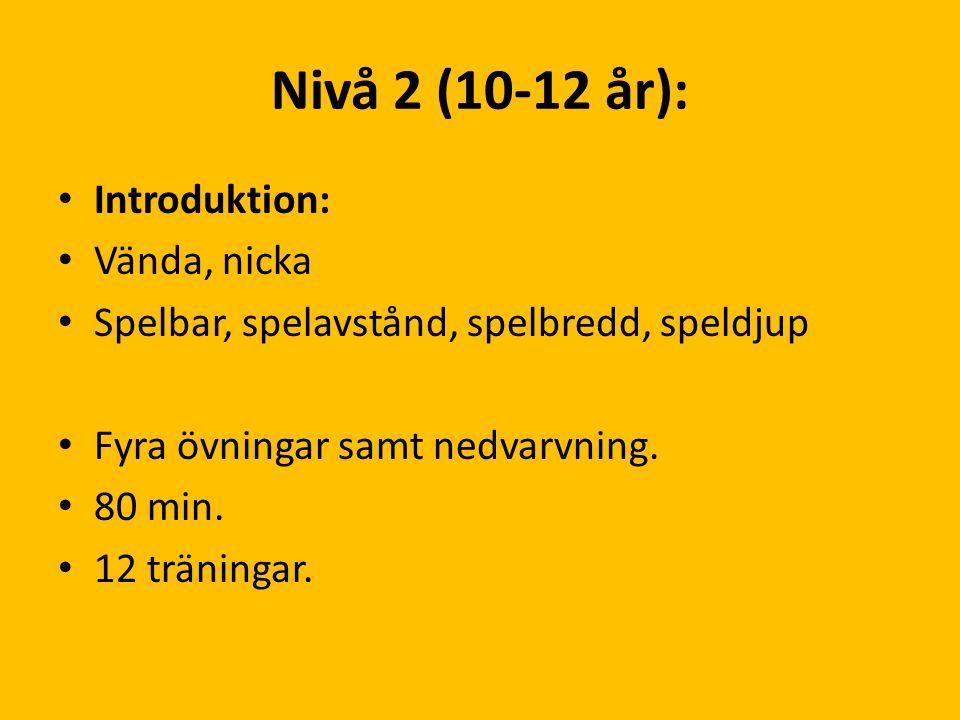 Nivå 2 (10-12 år): Introduktion: Vända, nicka