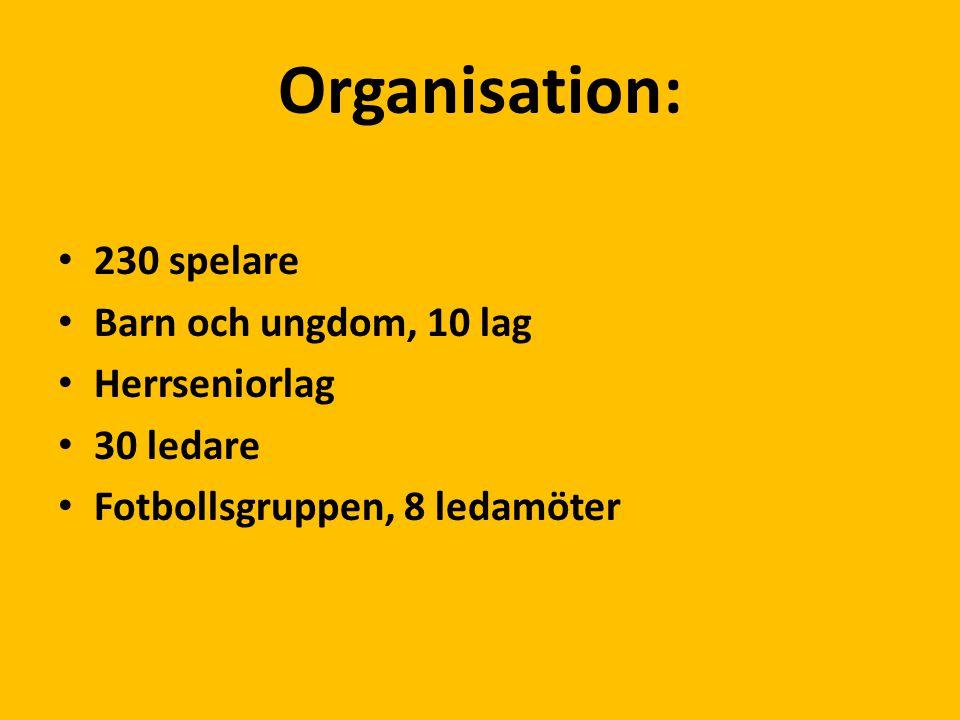 Organisation: 230 spelare Barn och ungdom, 10 lag Herrseniorlag