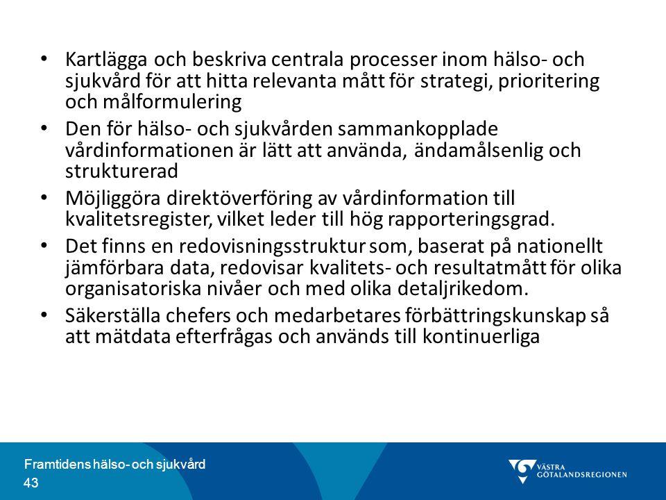 Kartlägga och beskriva centrala processer inom hälso- och sjukvård för att hitta relevanta mått för strategi, prioritering och målformulering