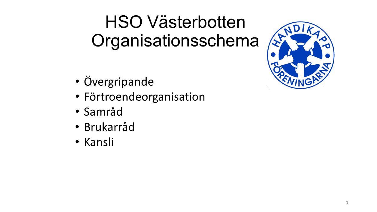 HSO Västerbotten Organisationsschema