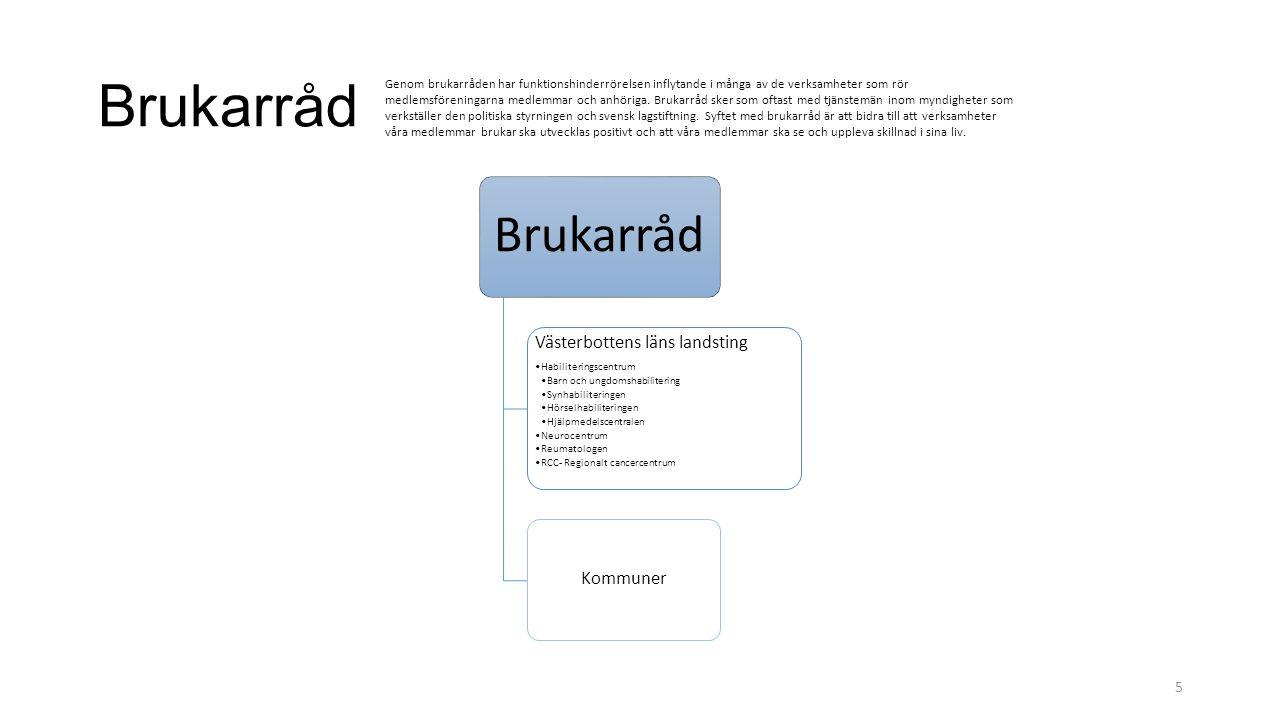 Brukarråd Västerbottens läns landsting Kommuner