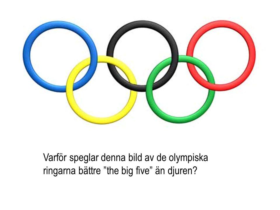 Varför speglar denna bild av de olympiska ringarna bättre the big five än djuren