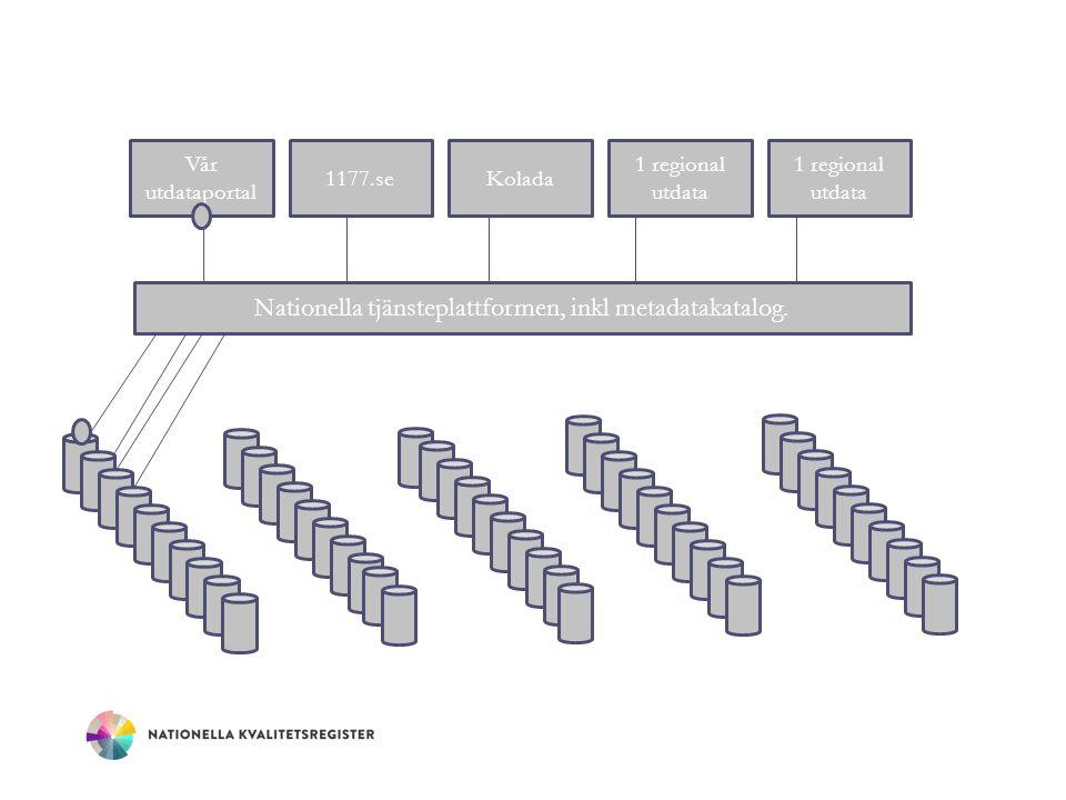 Nationella tjänsteplattformen, inkl metadatakatalog.