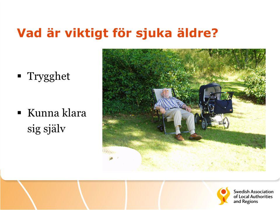 Vad är viktigt för sjuka äldre
