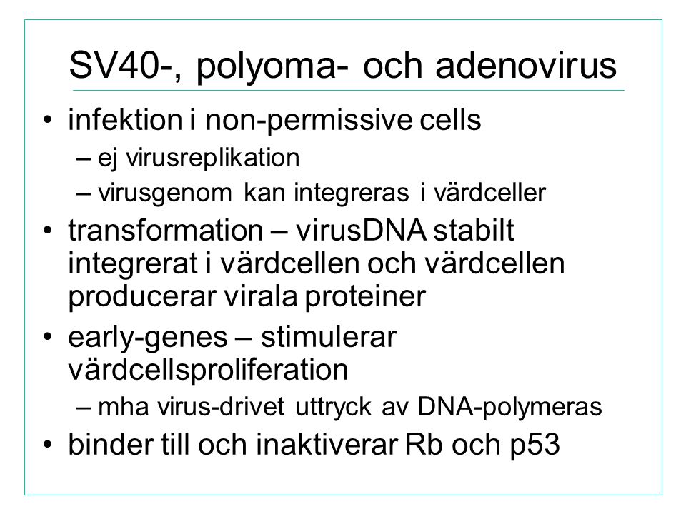 SV40-, polyoma- och adenovirus