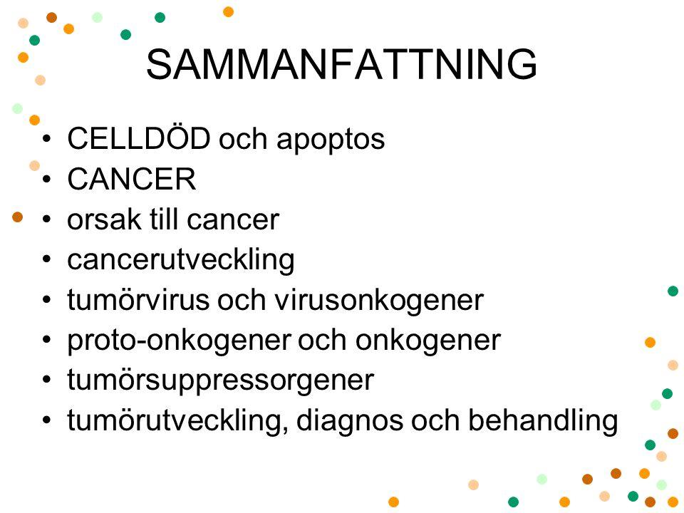 SAMMANFATTNING CELLDÖD och apoptos CANCER orsak till cancer