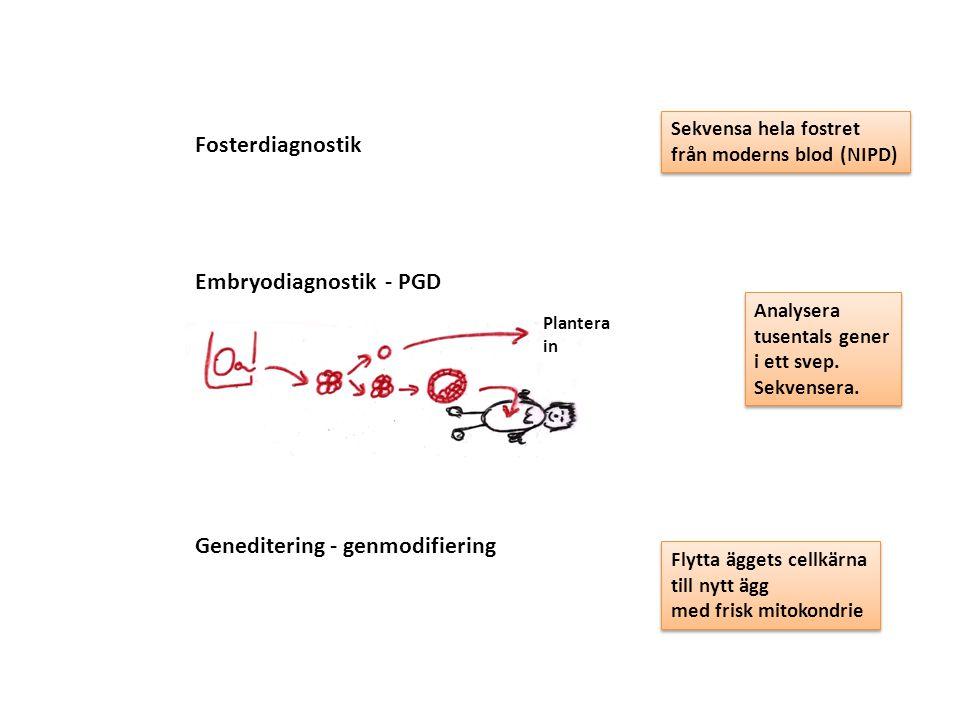 Embryodiagnostik - PGD