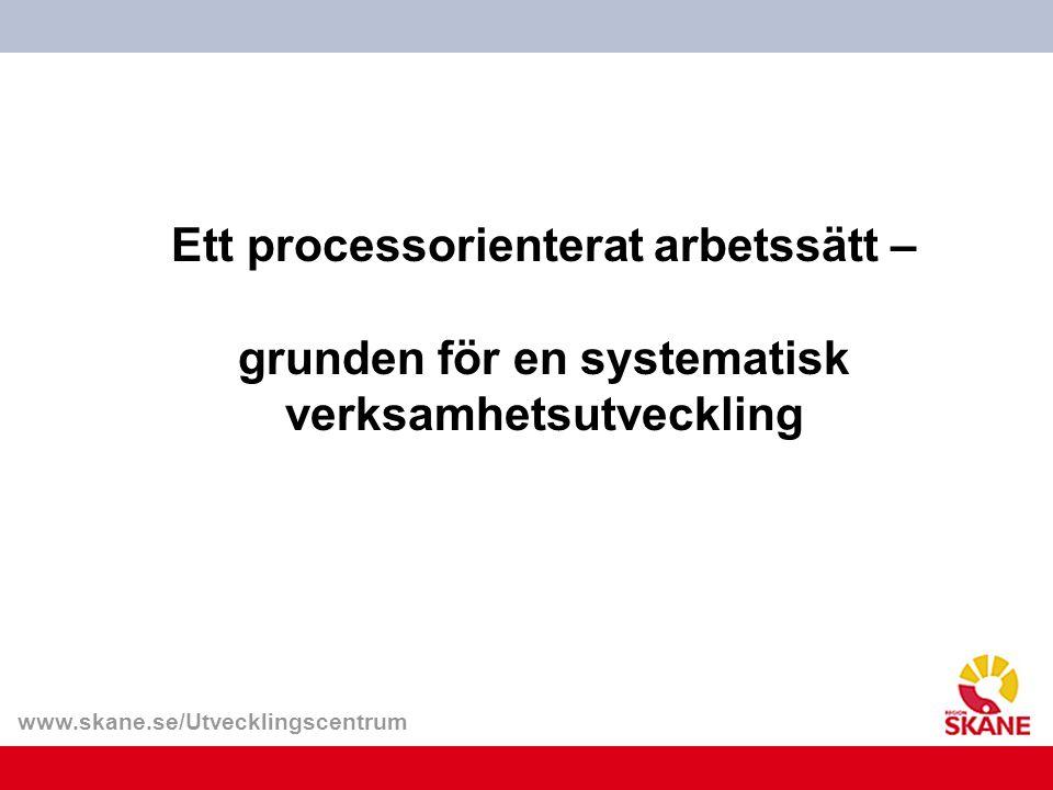 Ett processorienterat arbetssätt – grunden för en systematisk verksamhetsutveckling