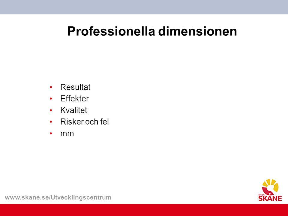 Professionella dimensionen