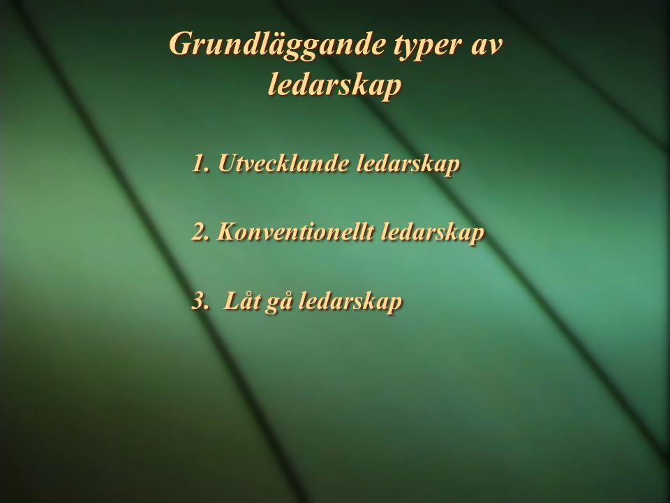 Grundläggande typer av ledarskap