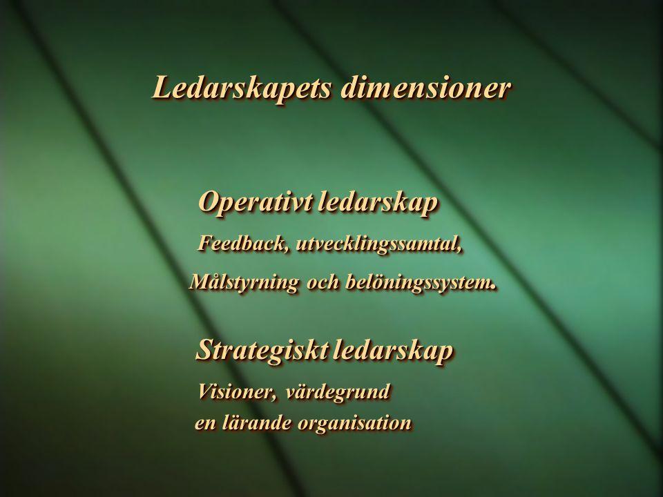 Ledarskapets dimensioner