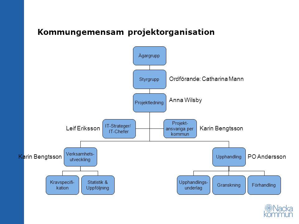 Kommungemensam projektorganisation