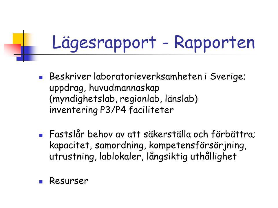 Lägesrapport - Rapporten
