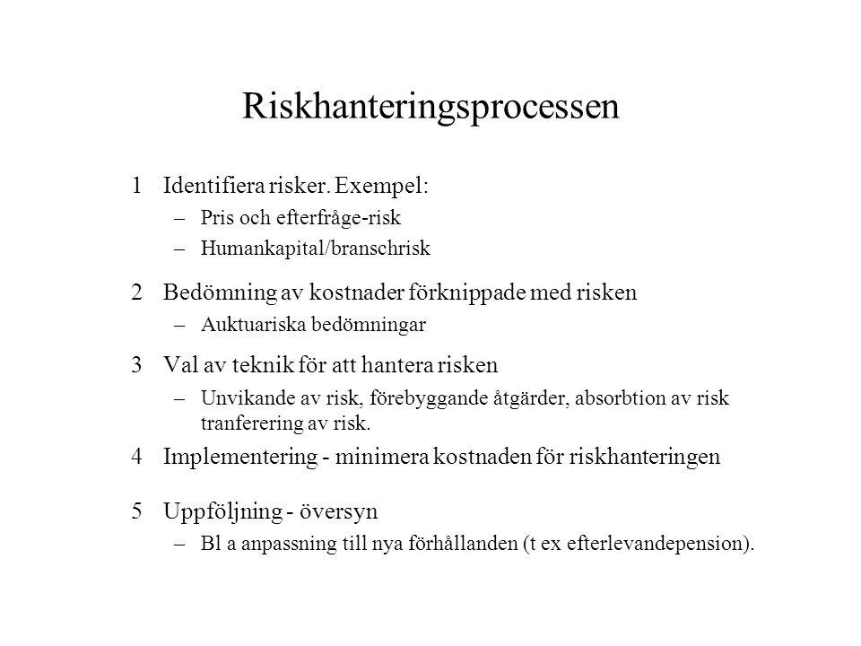 Riskhanteringsprocessen