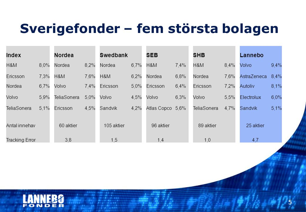 Sverigefonder – fem största bolagen