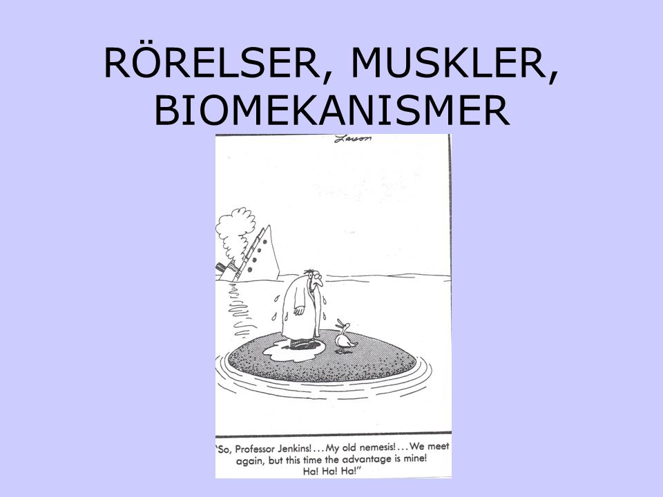 RÖRELSER, MUSKLER, BIOMEKANISMER