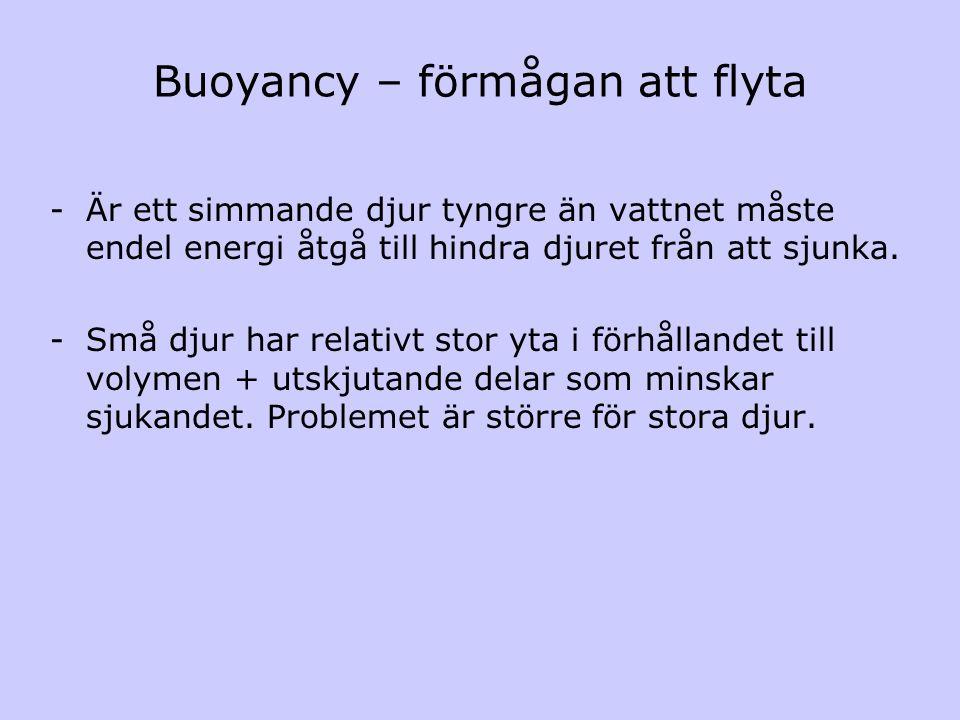 Buoyancy – förmågan att flyta