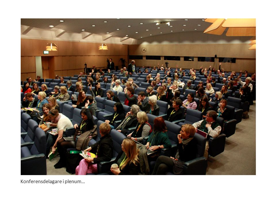 Konferensdelagare i plenum…