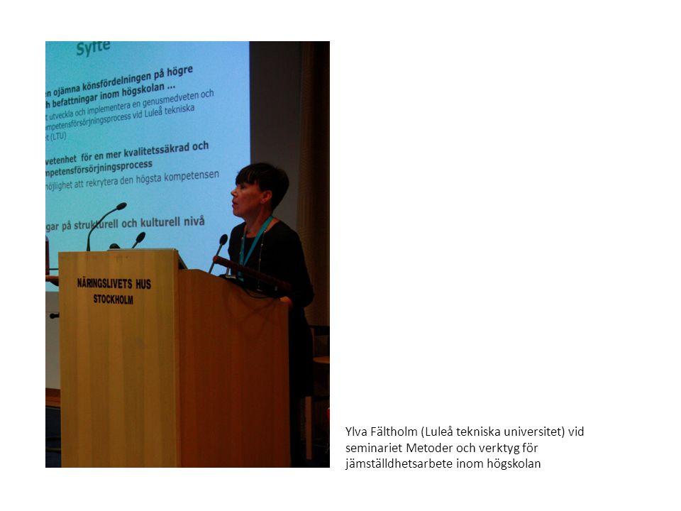 Ylva Fältholm (Luleå tekniska universitet) vid seminariet Metoder och verktyg för jämställdhetsarbete inom högskolan