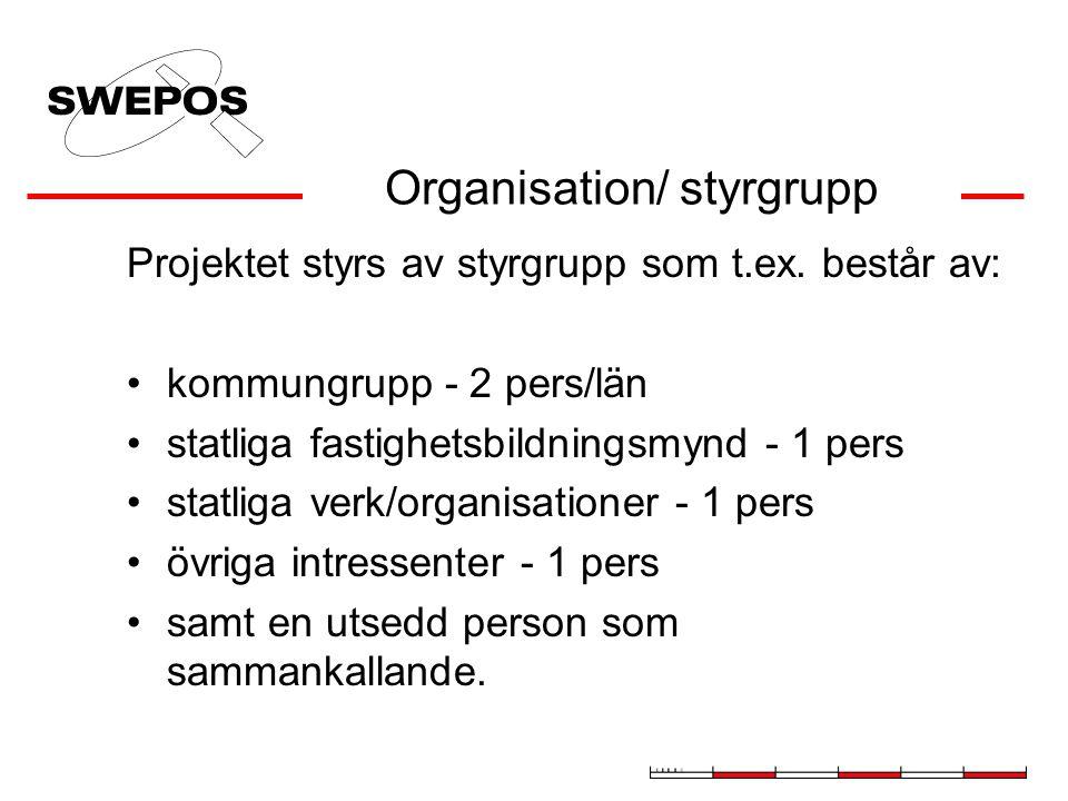 Organisation/ styrgrupp